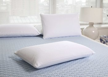 pure latex bliss pillow high loft low loft